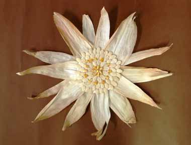Cvijet 2.e- likovna grupa- učiteljice Valentine Crnčević